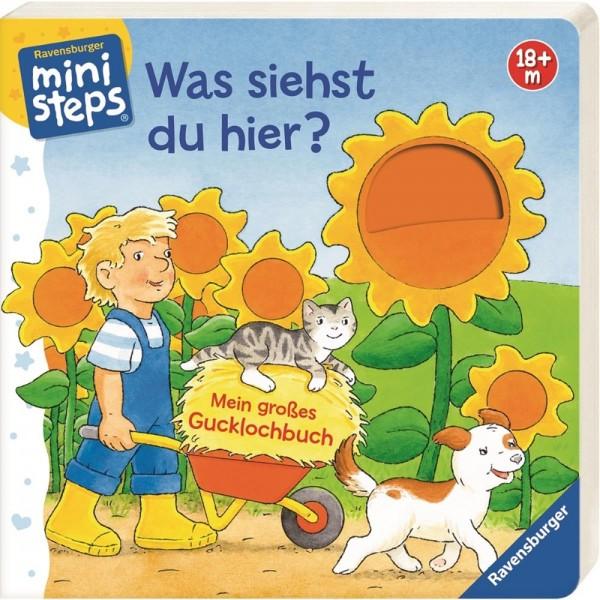ministeps Kinderbuch Was siehst du hier?