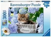 Ravensburger Kinder Puzzle XXL 300 Teile Kleine Katze