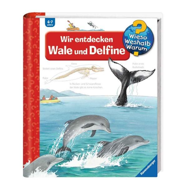 Ravensburger Kinderbuch Wieso Weshalb Warum? Wir entdecken Wale und Delfine